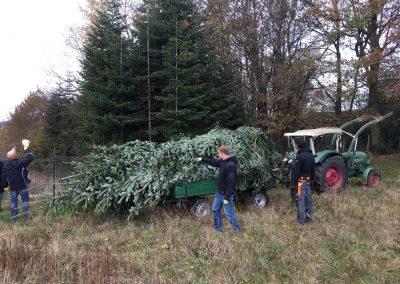Weihnachtsbaumaktion-005